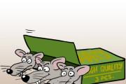Нарисую простую иллюстрацию в жанре карикатуры 106 - kwork.ru