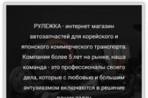 Создам лендинг на вордпресс 136 - kwork.ru