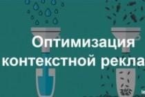 Создам лендинг на вордпресс 140 - kwork.ru