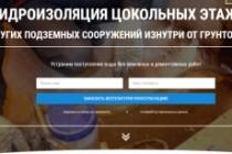 Создам лендинг на вордпресс 138 - kwork.ru