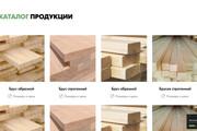 Вёрстка сайтов по доступной цене 261 - kwork.ru
