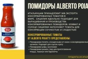 Стильный дизайн презентации 753 - kwork.ru