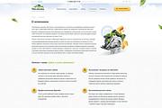 Создание продающего сайта под ключ 29 - kwork.ru