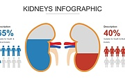 Инфографика на медицинскую тему. Шаблоны PowerPoint 31 - kwork.ru