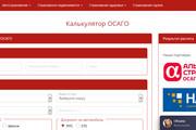 Качественная копия лендинга с установкой панели редактора 174 - kwork.ru