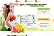 Скопировать лендинг 23 - kwork.ru