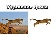 Удаление фона у 30 фотографий 31 - kwork.ru