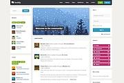 Тема BuddyPress для WordPress на русском с обновлениями 10 - kwork.ru