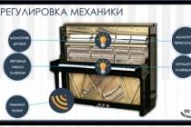 Создам инфографику 61 - kwork.ru