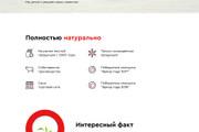 Создание Landing Page, одностраничный сайт под ключ на Tilda 65 - kwork.ru