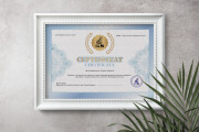 Сделаю сертификат 50 - kwork.ru