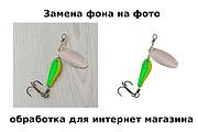 Уберу фон с картинок, обработаю фото для сайтов, каталогов 13 - kwork.ru