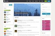 Тема BuddyPress для WordPress на русском с обновлениями 11 - kwork.ru