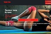 Создам лендинг на вордпресс быстро 71 - kwork.ru