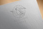 Создам уникальный логотип 9 - kwork.ru