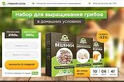 Копии двух лендингов из каталогов товарных CPA за 500 рублей 41 - kwork.ru