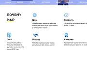 Создание сайта - Landing Page на Тильде 202 - kwork.ru