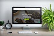 Интернет-магазин на Wordpress под ключ 13 - kwork.ru