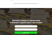 Скопирую Landing Page, Одностраничный сайт 23 - kwork.ru