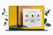 Дизайн Бизнес Презентаций 50 - kwork.ru