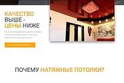 Лендинг для любых целей на Wordpress 166 - kwork.ru