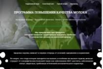 Создание красивого адаптивного лендинга на Вордпресс 167 - kwork.ru