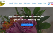 Landing Page на Wordpress 12 - kwork.ru