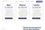 Скопирую страницу любой landing page с установкой панели управления 180 - kwork.ru