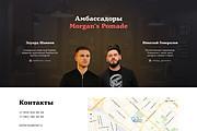 Лендинг на Tilda 21 - kwork.ru