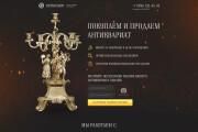 Дизайн первого экрана лендинга 9 - kwork.ru