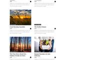 Создам красивый адаптивный блог, новостной сайт 41 - kwork.ru
