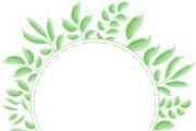Ботаническая иллюстрация 10 - kwork.ru