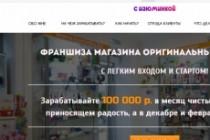Создам лендинг на популярных платформах 81 - kwork.ru