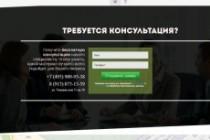 Создам лендинг на популярных платформах 87 - kwork.ru