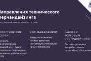 Стильный дизайн презентации 807 - kwork.ru