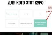 Лендинг для любых целей на Wordpress 127 - kwork.ru