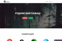 Создам сайт на WordPress 30 - kwork.ru