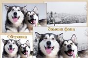 Обработка фото для интернет-магазинов и каталогов 15 - kwork.ru