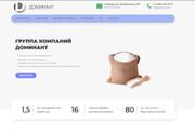 Скопирую почти любой сайт, landing page под ключ с админ панелью 80 - kwork.ru