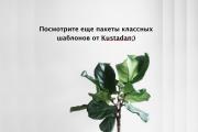 Набор инфографики. 13 тематик, 800 шаблонов, 2 пакета иконок 52 - kwork.ru