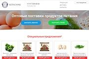 Скопирую Landing Page, Одностраничный сайт 179 - kwork.ru