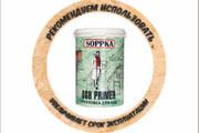 Векторизация файла, логотипа, отрисовка эскиза 56 - kwork.ru