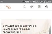 Конвертирую Ваш сайт в Android приложение 94 - kwork.ru