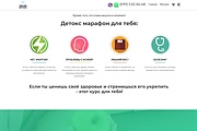 Создание одностраничника на Wordpress 266 - kwork.ru