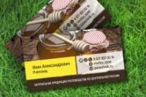 3 варианта дизайна визитки 177 - kwork.ru