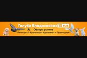 Оформление youtube канала 117 - kwork.ru