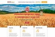 Продающий сайт - Лендинг под ключ, для любых целей 153 - kwork.ru