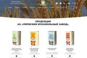 Скопирую почти любой сайт, landing page под ключ с админ панелью 91 - kwork.ru