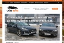 Создам автонаполняемый сайт на WordPress, Pro-шаблон в подарок 71 - kwork.ru