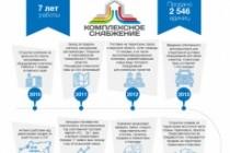 Создам инфографику 88 - kwork.ru